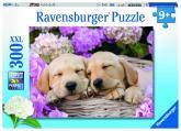 Ravensburger puzzle Sladcí psi v košíku, 300 dílků