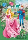 Disney Růženka  diamond