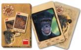 Karty Černý Petr Wild Animals