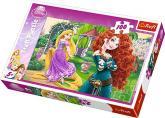Puzzle 100 - Bojovnice / Princezny