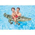Krokodýl 170x86cm