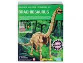 Brachiosaurus skládací kostra