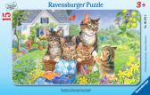 Ravensburger puzzle Sladké kočičky 15 dílků