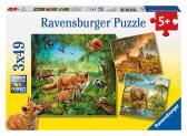 Ravensburger puzzle Země živočichů 3x49 dílků