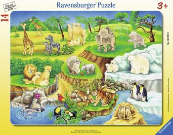 Ravensburger puzzle ZOO 8-17 dílků rámové