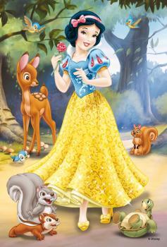 Princezny minipuzzle 54d - dis.48ks