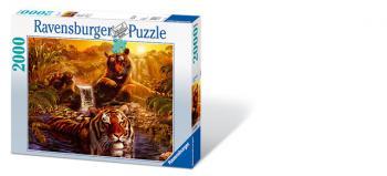 Ravensburger puzzle Koupel 2000 dílků