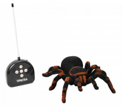 Strašlivý pavouk