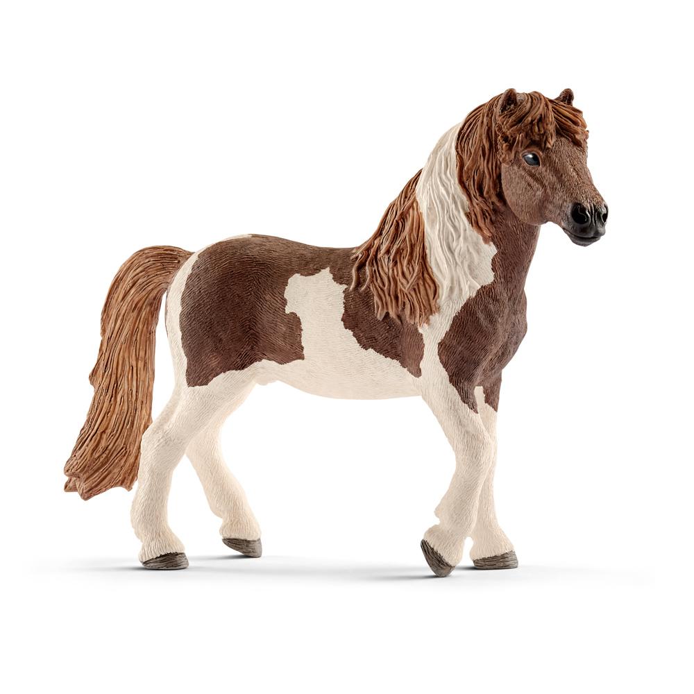 Zvířátko - islandský Pony hřebec