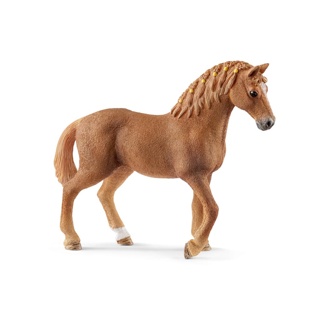 Zvířátko - kůň plemene Quarter