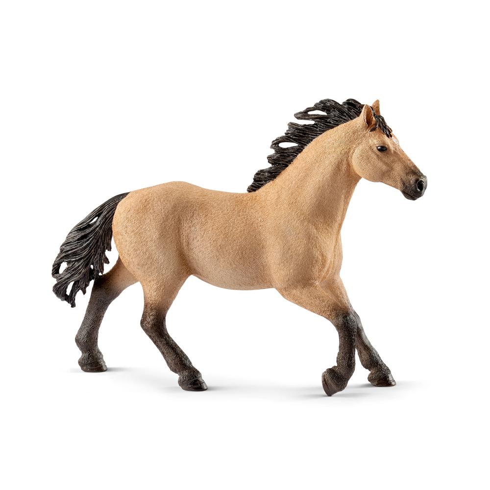 Zvířátko - kůň plemene Quarter Hengst